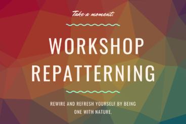 Workshop Repatterning
